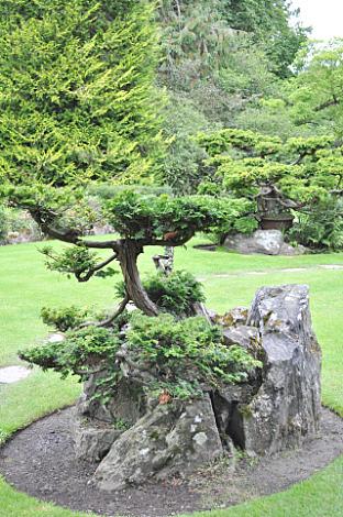 Japanese Gardens (11)