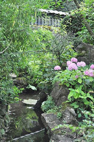 Japanese Gardens (2)