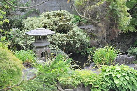 Japanese Gardens (8)